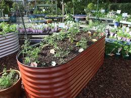 raised garden beds perth wa garden gardens raised garden bed perth
