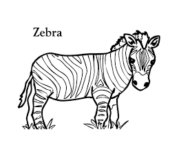 Small Picture Trend Zebra Coloring Page 21 For Coloring Books with Zebra
