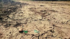 cause and effect essay topics dried river bed during a drought