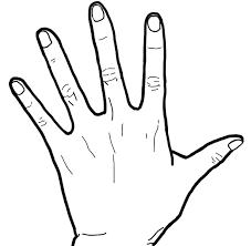 手 白黒線画左手手背面 リハイラスト Ptotstニュース