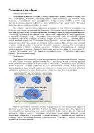 Патогенные простейшие реферат по биологии скачать бесплатно крови  Патогенные простейшие реферат по биологии скачать бесплатно крови цитоплазма диагноз препараты возбудитель растворы оболочка ядра СОСТАВ
