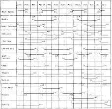 Vegetable Garden Fertilizer Chart Succession Planting