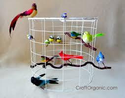 add birds