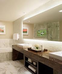 Tv In Bathroom Mirror Home Design