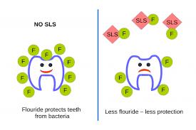 sodium lauryl sulfate toothpaste flouride