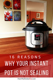 16 reasons why your instant pot is not sealing pin with instant pot duo on
