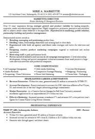 Cv Examples - Free Examples Of Cvs For Different Professions