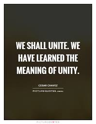 Unity Quotes Mesmerizing Unity Quotes Unity Sayings Unity Picture Quotes