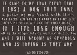 Dog Passing Quotes Cool 48 Sympathy Quotes To Help Cope With Death Of A Pet YourTango
