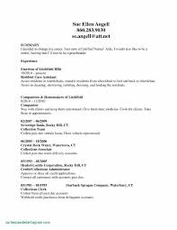 Sample Resume For Certified Nursing Assistant Resume Template