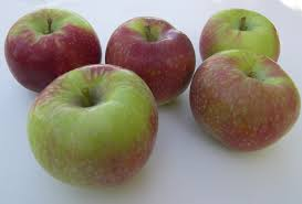 green and red apples. this green and red apples v