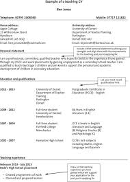 teaching cv template for excel  pdf and wordexample of a teaching cv