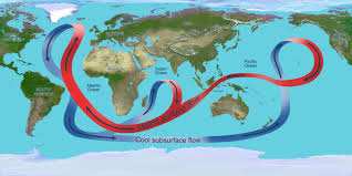 convection currents ocean. illustration depicting the circulation of global ocean. throughout atlantic ocean, convection currents ocean l