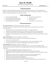 Professional Project Manager Resume Samples Bongdaao Com