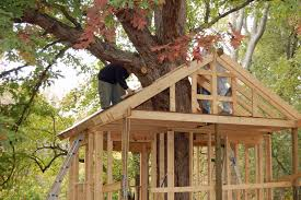 Make A Treehouse  Treehouse Blueprints Pictures of Tree Houses and Play  Houses From Around The ... Treehouse