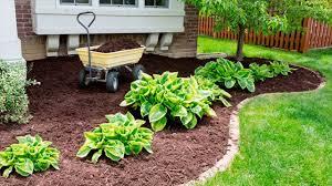 garden mulch. Modren Garden Previous Next In Garden Mulch