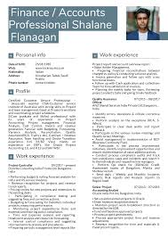 Resume Examples By Real People Deloitte Finance Manager Resume