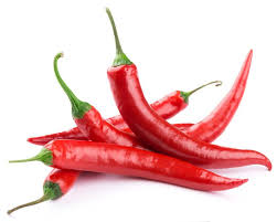 chili peppers. Contemporary Peppers Chili Peppers Contain The Ingredient Capsaicin That Can Relieve Pain A  Phenomenon At Heart Of Research New Jersey Medical School To Peppers