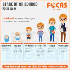 Những từ vựng tiếng Anh chỉ 6 giai đoạn thời thơ ấu của trẻ - Focas English