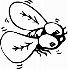Small Picture Free prinable insects coloring pages for kids