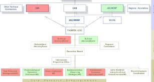 A The Ambitious Thorpex Organizational Chart As Proposed In