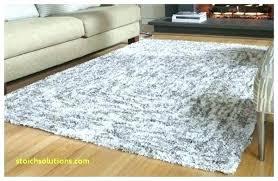 10x12 area rug