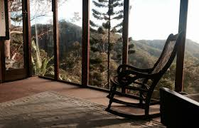 The Canopy Treehouses  Cairns Luxury Wildlife Accommodation And Treehouse Accommodation Nsw