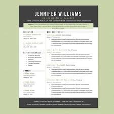 Professional Resume Template Pkg. - Resumes