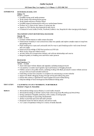 Blogger Resume Samples Velvet Jobs