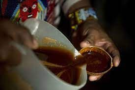 Ancient ayahuasca found in 1,000-year ...