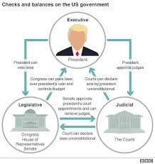 Taking On Trump Is The Us Facing A Constitutional Crisis