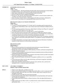 Branch Manager Resume Examples Branch Manager Resume Samples Velvet Jobs 1