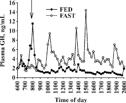 Steer Feeding Chart Plasma Ghrelin Concentrations Of Individual Steers In Exp 1