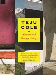 the best teju cole essays for all moments in life brittle paper in teju cole s new book known and strange things there are 50 essays cole is a busy writer in the last 8 years he has written lots of essays and