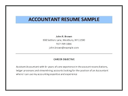 Professional Objective In Resume Beauteous Accounting Objectives For Resumes Accountant Objective Accounting