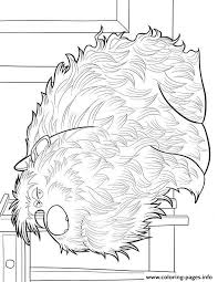 Small Picture Max From The Secret Life Of Pets Coloring Page Free Printable