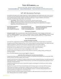 Job Resume New Resume Sample Format For Job Application Beautiful Resume Sample