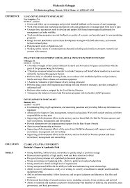 Development Specialist Resume Samples | Velvet Jobs