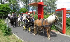 Met Paard En Koets Naar De Drive In Van De Quick Limburg Nieuws