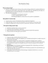 personal narrative essay examples how to write a good topics  good narrative essay examples sample argumentative how to write a about yourself outline example cover letter
