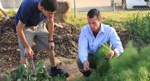lonnie sclerandi austin texas school garden