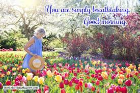 40 Good Morning Quotes With Inspirational Beautiful Images Fascinating Beautiful Madam In Beautiful Garden Quotes