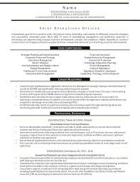 Business Management Resume Samples Business Operations Executive ...