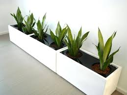 office planter. office planter boxes premium fiberglass box white