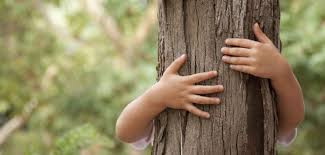 Resultado de imagen de educacion ambiental niños