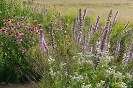 pre planned garden solutions prairie