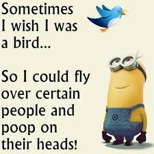 Quotes That Make You Laugh Mesmerizing 48 Hilarious Minions Quotes That Will Make You Laugh Page 48