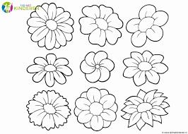 Kleurplaat Rozen Geïnspireerd Bloemen Kleurplaten Eenvoudig