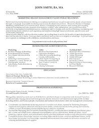 marketing and sales cv ad sales resume advertising advertising sales executive cv sample