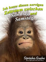 Spruchbild Mit Affe Scheiss Arbeiten Sprüche Sprüche Suche